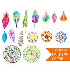 watercolor feather and pattern collection vector image