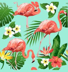 flamingo bird vector image vector image