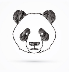 angry panda head cartoon fat panda face vector image