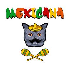 cat face cat with sombrero mustache maracas vector image