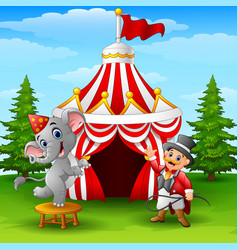 Circus elephant and tamer on the circus tent backg vector