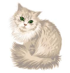 Kitik vector