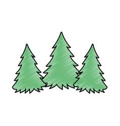 pine forest scene silhouette vector image