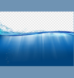 underwater landscape with sunbeams vector image