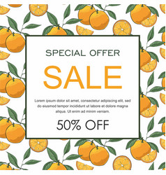 sale banner decorate with hand drawn oranges vector image