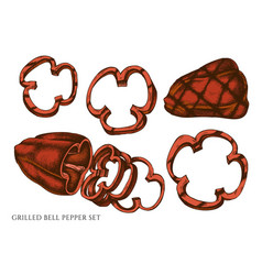 Set hand drawn colored grilled bell vector