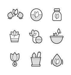 Set of Alternative Medicine Icons vector