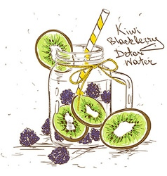 Sketch of Kiwi Blackberry detox water vector