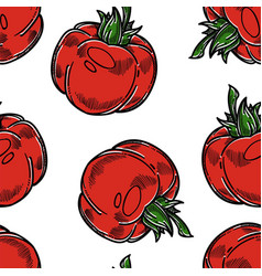 vegetable seamless pattern tomato farm harvest or vector image