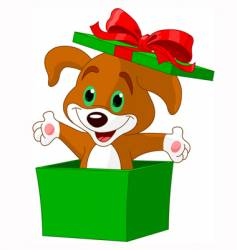 puppy box vector image vector image
