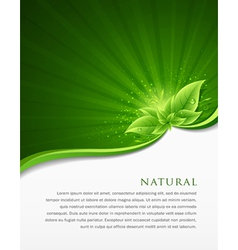 Green leaf ecology concepts vector image