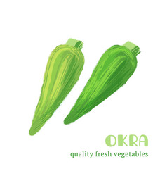 fresh okra isolated on white background vector image