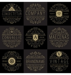 Luxury logo templates set in vintage style vector image