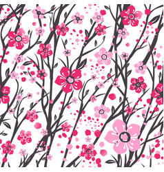 sakura japan cherry branch with blooming flowers vector image