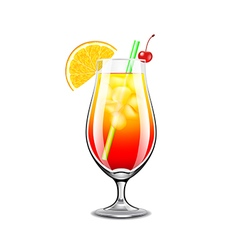 Sex on the beach cocktail isolated vector