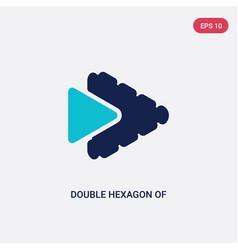 Two color double hexagon small triangles icon vector