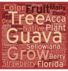 History of the guava text background wordcloud vector