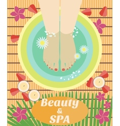 Beauty and spa procedures made in flat design vector image vector image