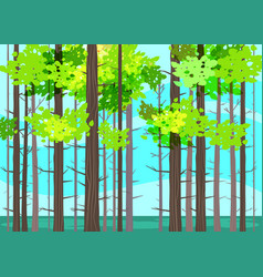 beautiful spring forest trees green foliage vector image