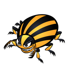 Colorado beetle vector
