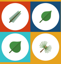 Flat icon ecology set of spruce leaves linden vector