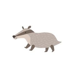 Grey Badger Walking vector