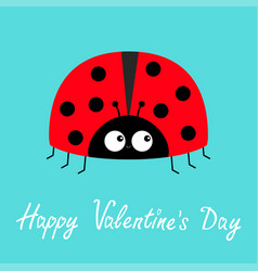 happy valentines day red lady bug ladybird icon vector image