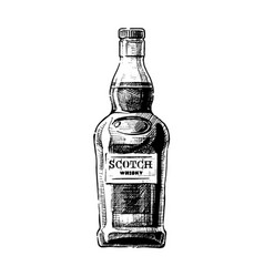 scotch vector image