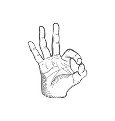Sketch Ok Gesture vector