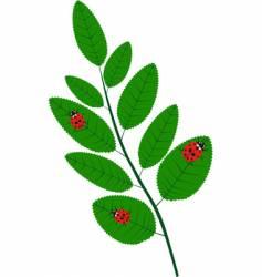 twig vector image