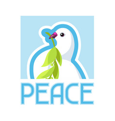 white dove of peace bears olive branch vector image