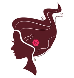 Beautiful brown hair silhouette isolated on white vector image