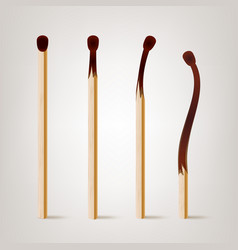 realistic burnt match various stages of vector image vector image