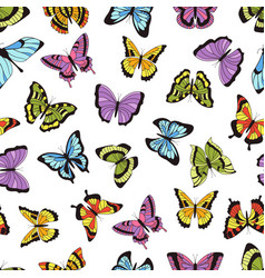 butterfly seamless pattern floral garden print vector image
