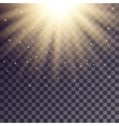 Golden rays from top with shiny particles vector image
