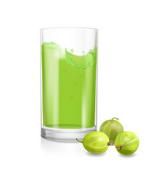 Gooseberry fruit juice in a drinking glass vector