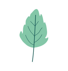 Green light color of small lobed leaf plant vector
