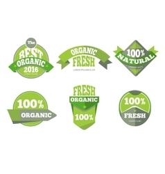 Green organic natural labels set vector image