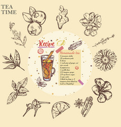 sketch tea recipe round template vector image