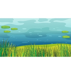 A water and a beautiful landscape vector image vector image