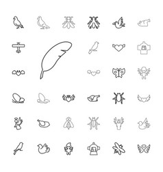 33 wing icons vector