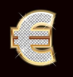 Euro money sign vector image