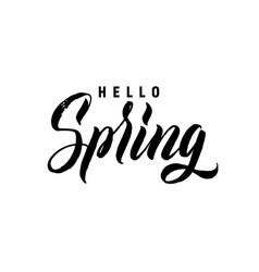 hello spring hand lettering black letters white vector image