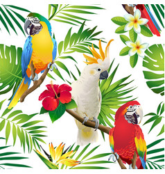 Seamless pattern parrots cockatoo on tropic vector