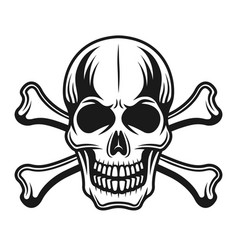Skull with crossbones detailed vector