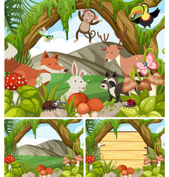 three forest scenes with animals and plants vector image