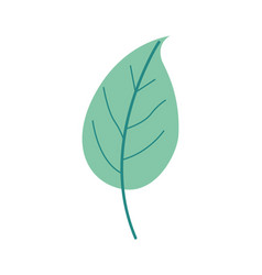 Green light color of simple leaf plant vector