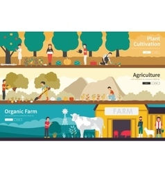 Plant Cultivation Agriculture Organic Farm flat vector image vector image