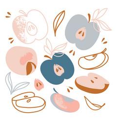 Apples sweet fruit hand drawn flat design garden vector