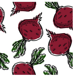 beetroot with foliage vegetable red color vector image